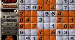 The Introduction Of Sudoku Puzzles